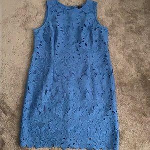 Loft blue lace shift dress